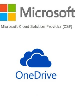 CSP- OneDrive for Business (Plan 2)